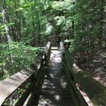 Beartown State Park